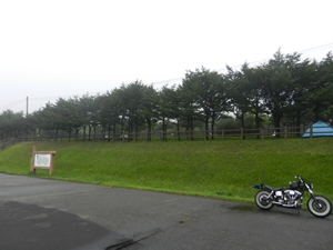 稚内森林公園キャンプ場