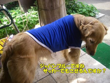 newなTシャツ