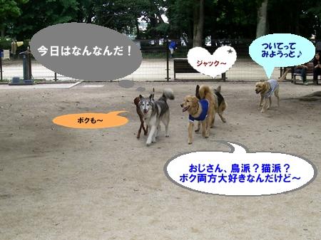 大型犬's