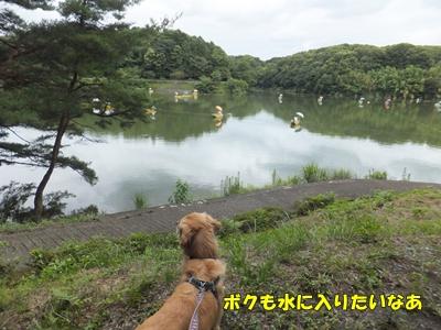宮沢湖ヘラ釣りボート
