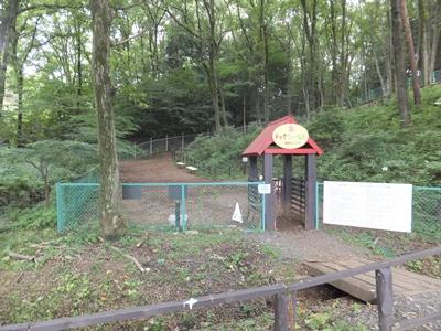 宮沢湖ドッグラン小型犬エリア
