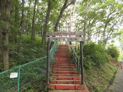 宮沢湖ドッグラン階段