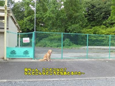 宮沢湖元動物園入口