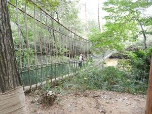 一本吊り橋