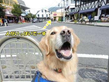 旧軽井沢にて