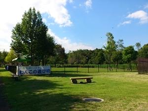 川越水上公園ドッグラン