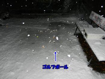 積もり始めた雪
