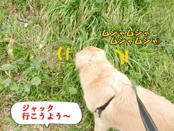 草美味し☆