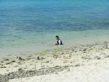 の〜んびり砂浜で