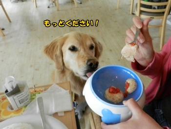 お食事中♪