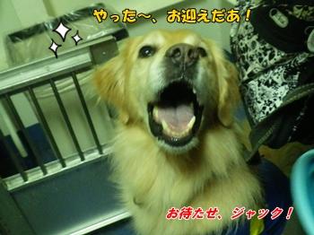 この笑顔!