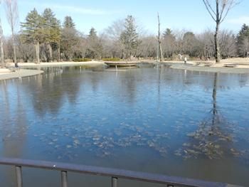 氷の張る池