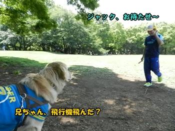 兄ちゃんと公園