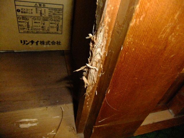 2012_0529美匠堂0032