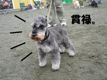 たけちゃん
