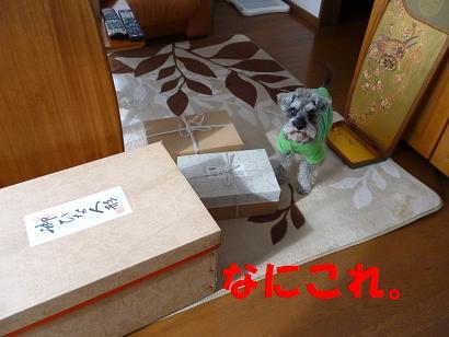 2012 ブログ用 710a