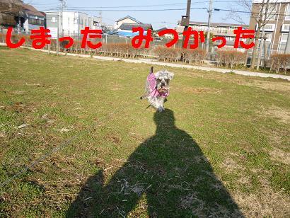 2012 ブログ用 725しまった