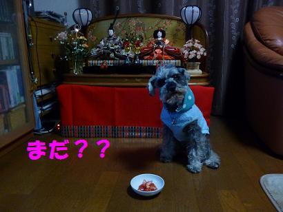 2012 ブログ用 738まだ??