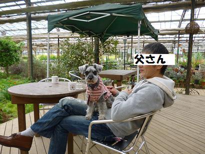 2012 ブログ用 824ハーブ3