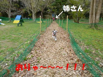 2012 ブログ用 823一直線