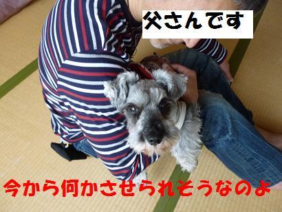 2012 ブログ用 847何か