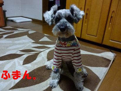 2012 ブログ用 819ふまん1