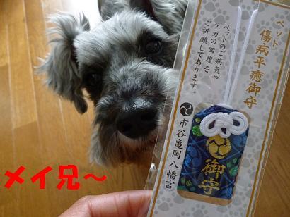 2012 ブログ用 884お守り