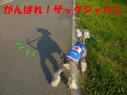 2012 ブログ用 924がんばれザック