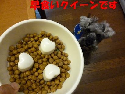 2012 ブログ用 928早食い防止