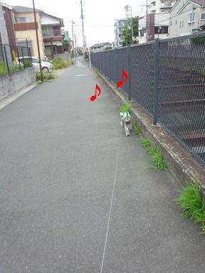 2012 ブログ用 933♪