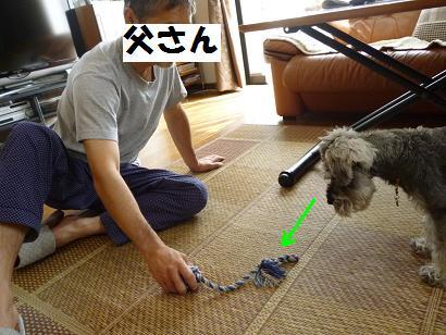 2012 ブログ用 951遊び1