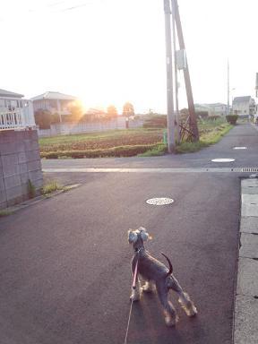 2012 ブログ用 1020朝日