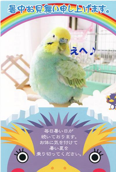 ぴーちゃん♪