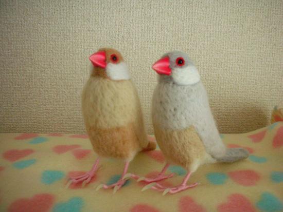 実は羊毛文鳥さんです♪