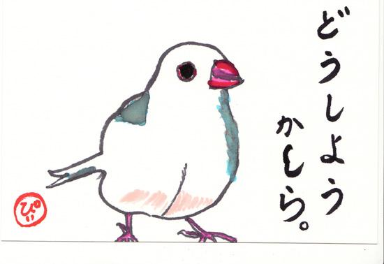 純(じゅん)