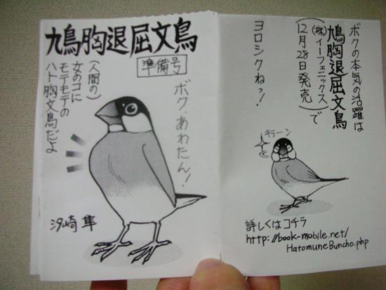 鳩胸退屈文鳥(^v^)