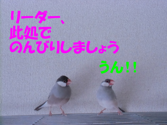 えぇ~っ!!