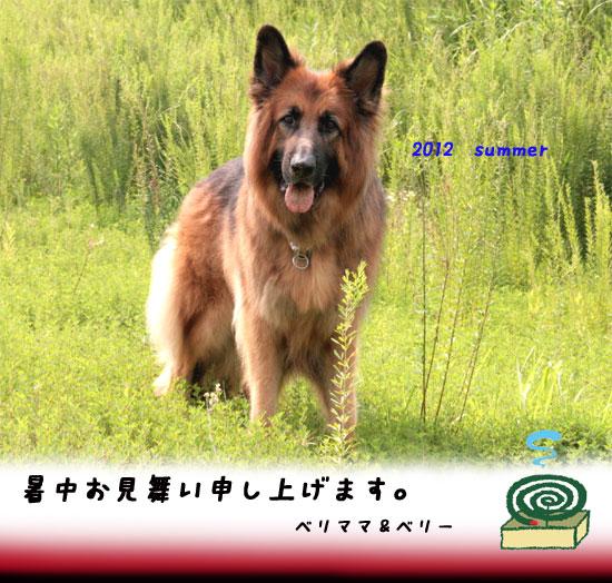 20120731214210530.jpg