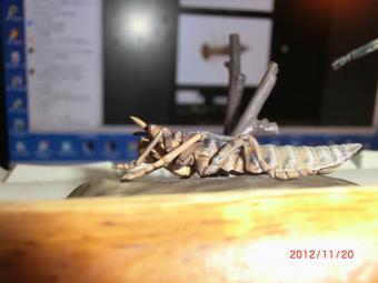 2012_11_20_103.jpg