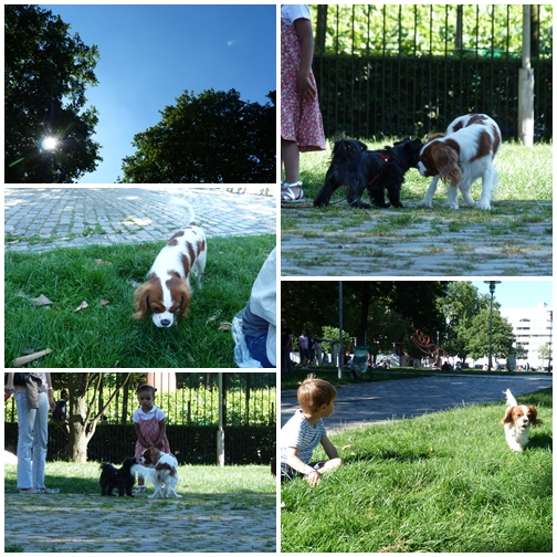 ベルシー公園