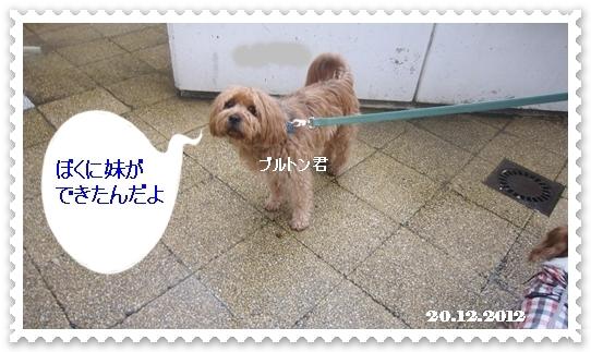 IMG_4470.jpg