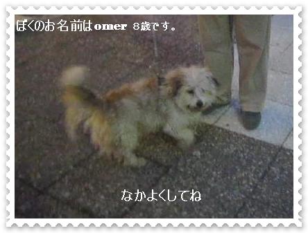 MVI_47308-crop.jpg