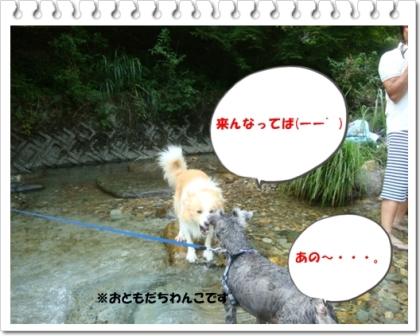 DSC08788.jpg