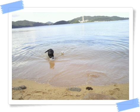 編集_P1020114