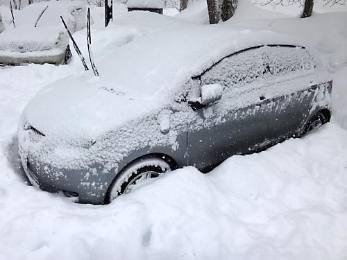 ヴィッツ雪だらけ