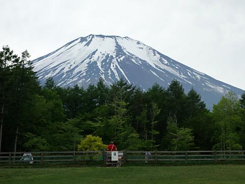 woof からの富士山