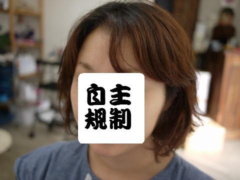 P1130981a.jpg