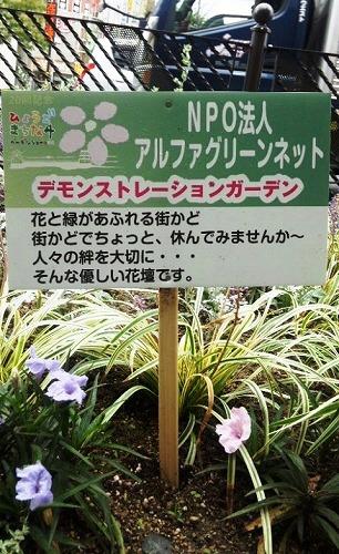 s-!cid_1CAC950FBF52471FB760E83E9F726EC2@MICHIYOshu.jpg
