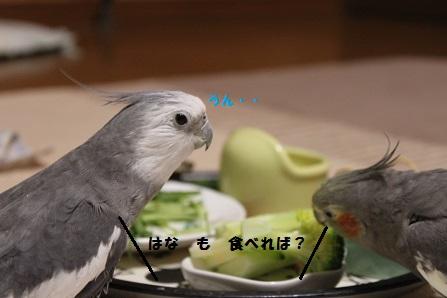 食べれば~
