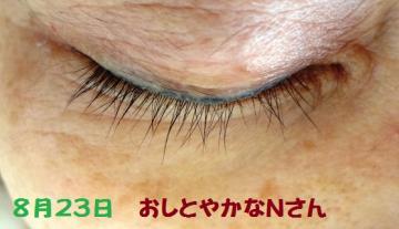 005_convert_20120823194734.jpg